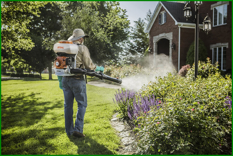 Mow Trim Blow Mosquito Control Great Lawn Care Prices
