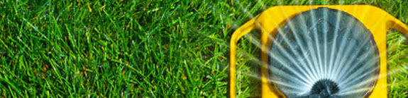 Water Lawn MowTrimBlow.com