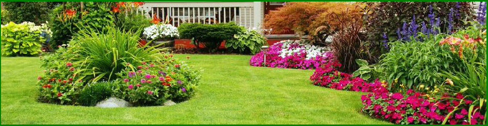 Mow Trim Blow - Lawn Care
